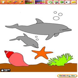 Coloring Dolphins 3