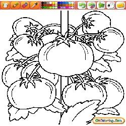 Coloring Vegetables 1