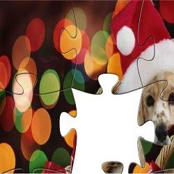 Puzzle Animals in Christmas 2