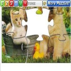Puzzle Cats and Dog