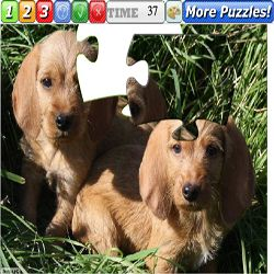 Puzzle Dogs 8