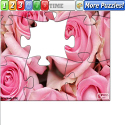 Puzzle Pink Roses